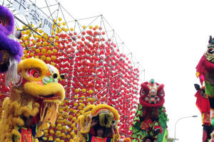 Introduction to Lion Dance